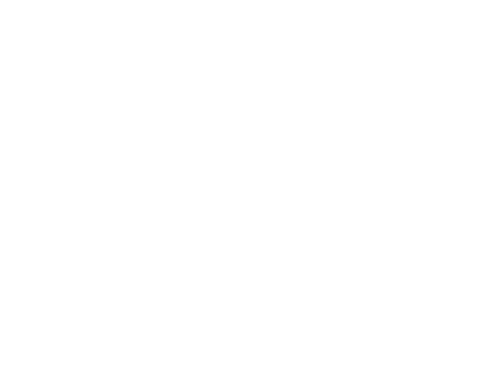 pizza street food